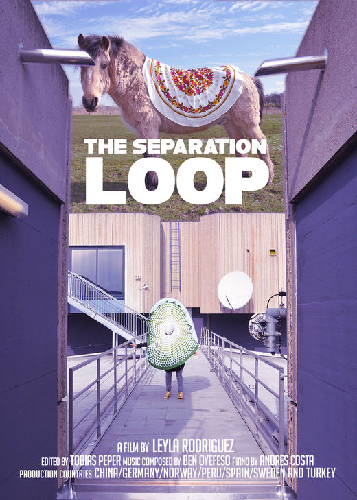 The Separation Loop @ the Video Vortex XI VV XI from 22-26 February, as a part o