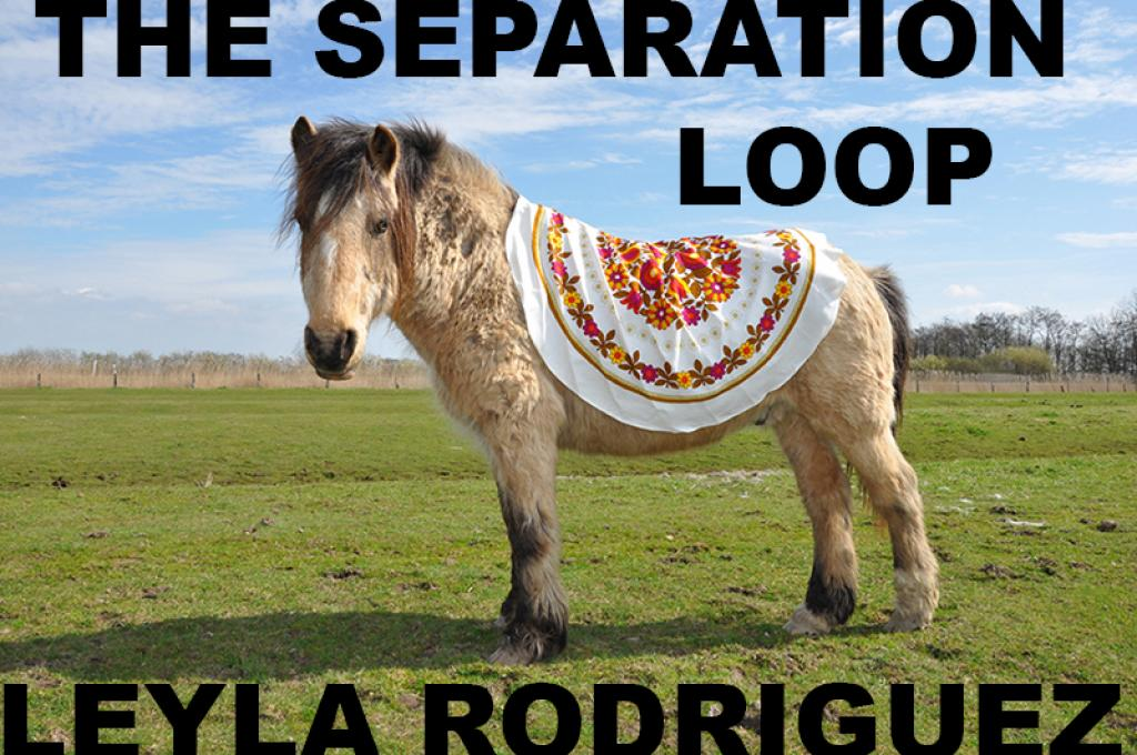 """THE SEPARATION LOOP"" 2015 / from Leyla Rodriguez @ the European Media Art Festi"
