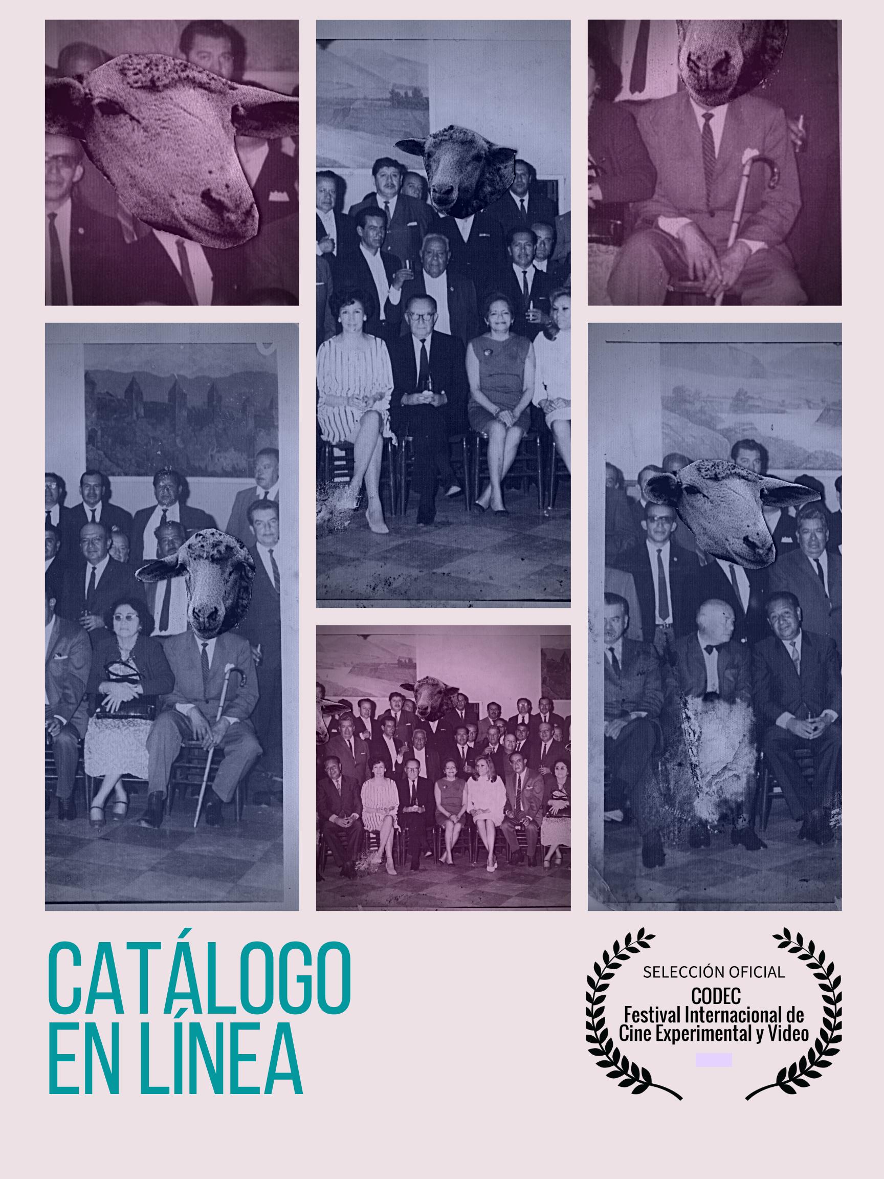 The Separation Loop @ the online Catalouge from the Festival Internacional de Cine Experimental Y Video