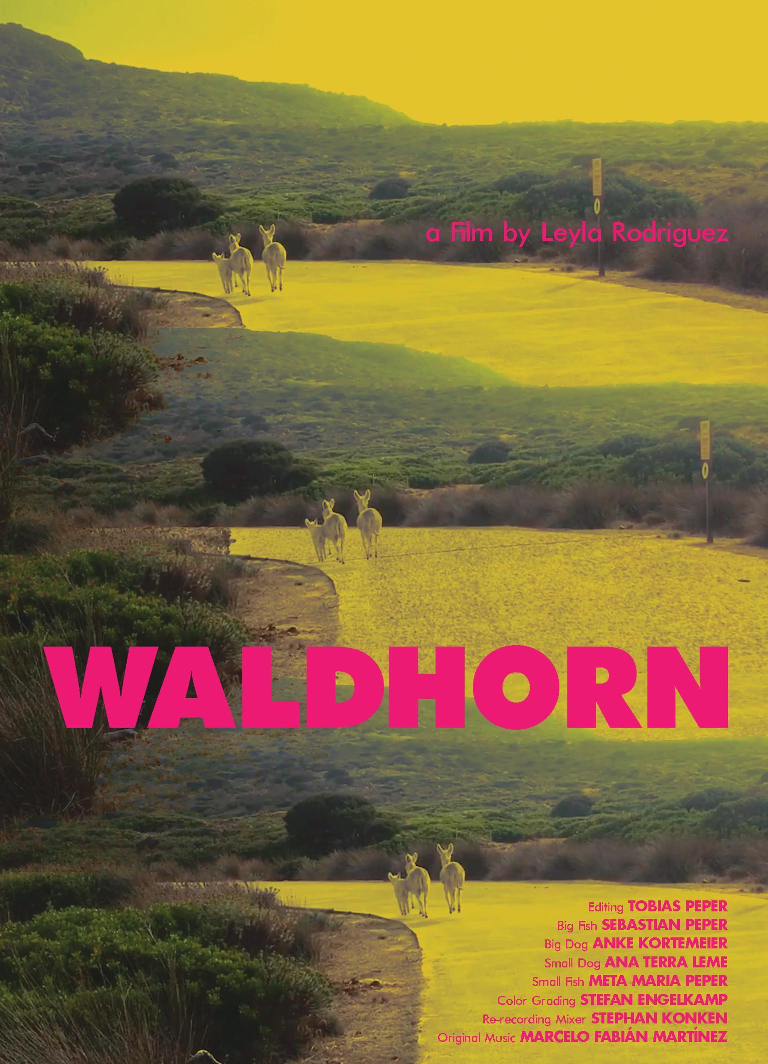 Waldhorn from Leyla Rodriguez @ the Tranås at the Fringe INTERNATIONAL ARTS FESTIVAL, Tranås/ SWEDEN