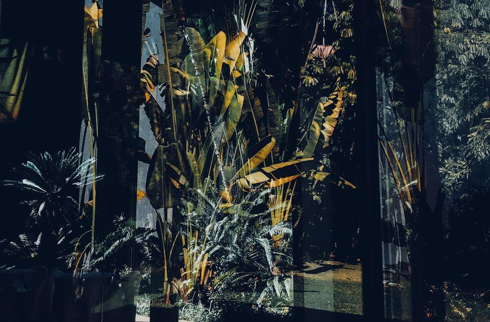 Jewgeni Roppel: Diary from Inhotim @ the Galerie Genscher, Hamburg/ GERMANY