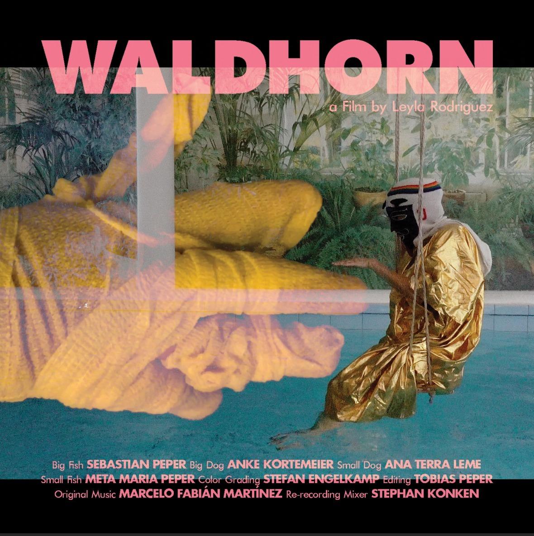 """""""WALDHORN"""" world premiere @ the Festival des Cinémas Différents  2020 - 16 octobre • Compétition internationale Compétition #4"""